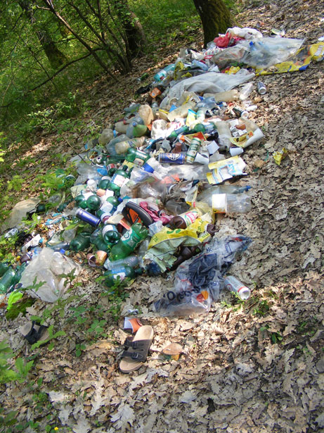 conservation-ecology_forest_garbage_wen