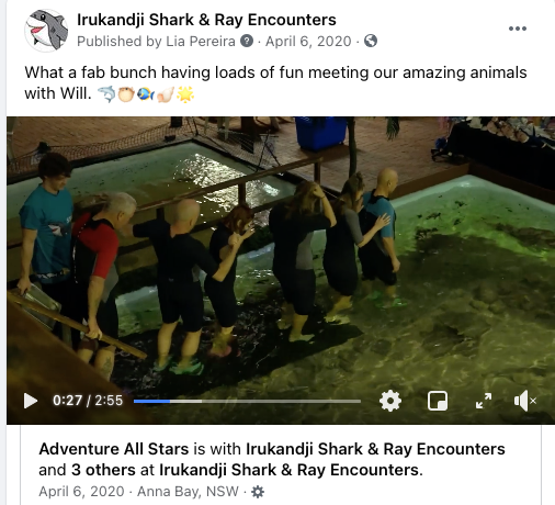 Adventure All Stars feature