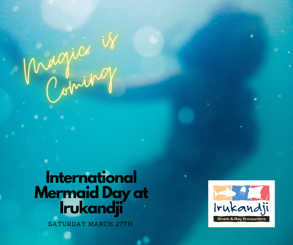 Mermaid Day