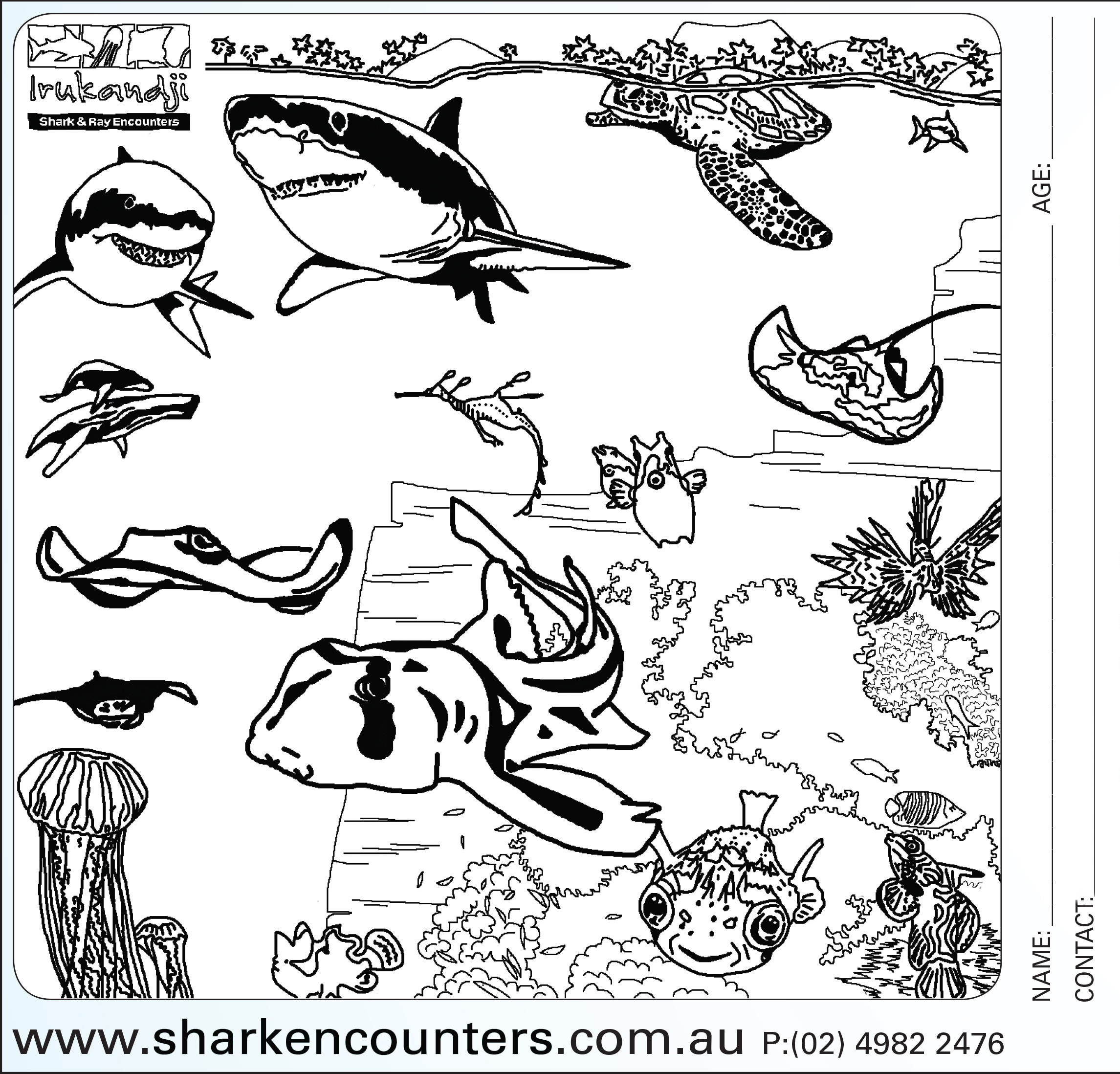 colouring sheets Under the Sea