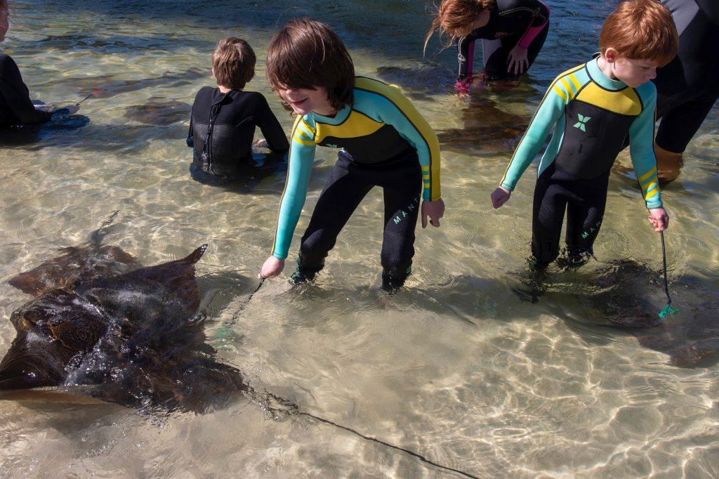 mini marine biologist