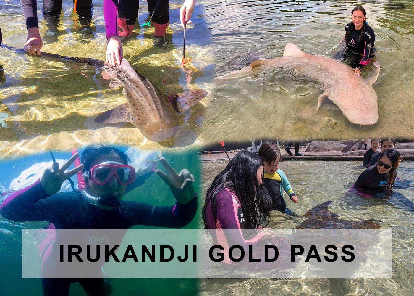 Irukandji Gold Pass ticket