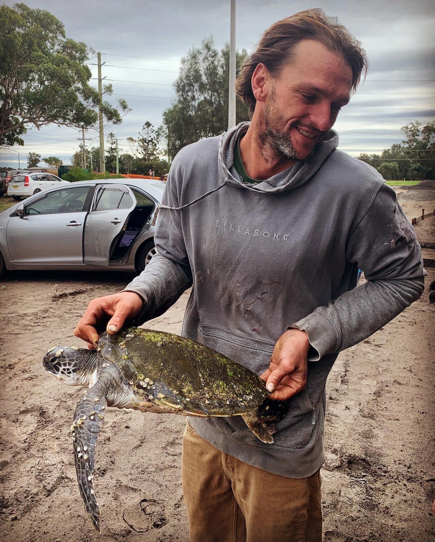 Turtles Port Stephens