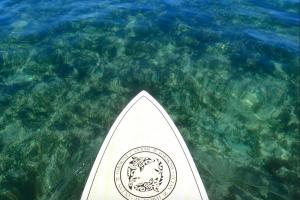 Paddleboard in Shoal Bay